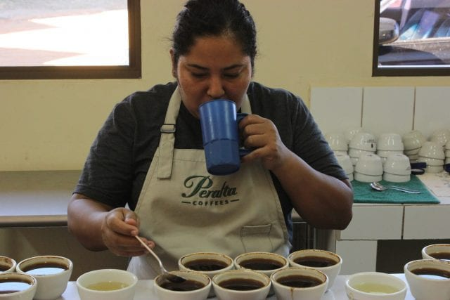cupping micro lots