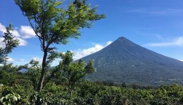 Jóvenes Emprendedores de Guatemala: Creando Una Industria Más Sólida