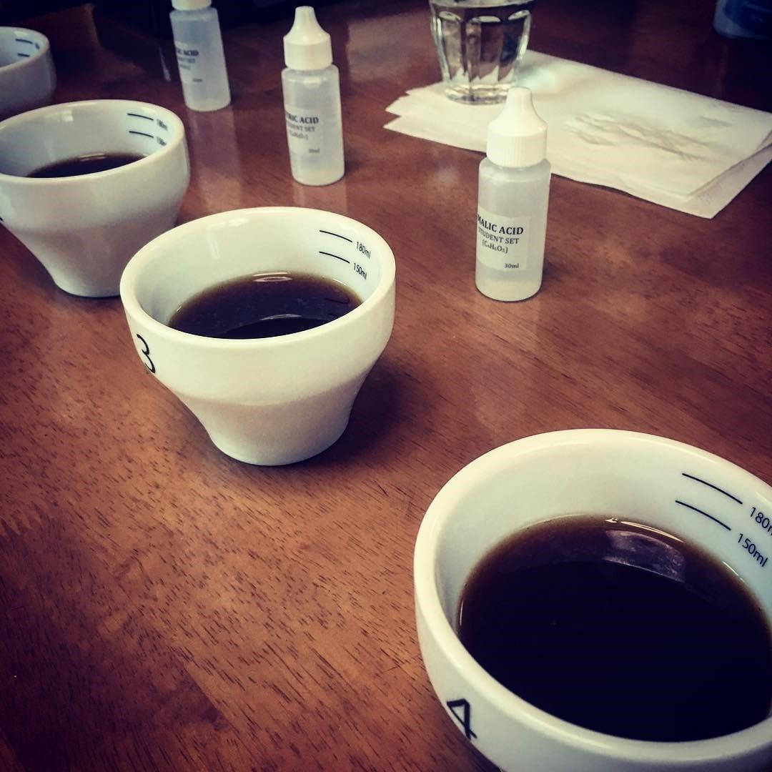 cata de cafe