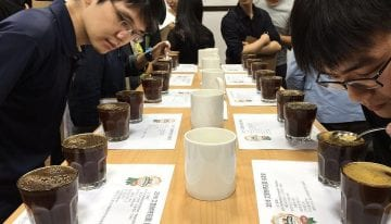 How Can Coffee Auctions Enable Direct Trade Relationships?