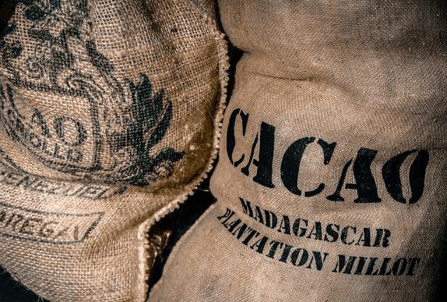 Bolsas de granos de cacao