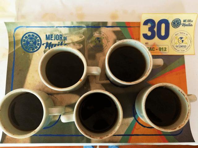 Catando cafe