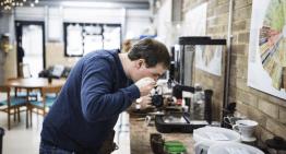 Lenguaje Sensorial: La Clave para Hablar sobre Defectos del Café Verde