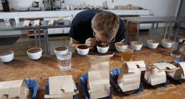 Lo Que Debes Saber Sobre las Mezclas de Café –  Parte 2