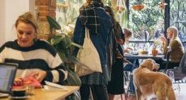 Un Recorrido Por Las Tiendas de Café de Valencia, España