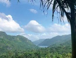 Exploring Cuba's Coffee Farms