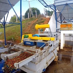 coffee washer and separator sorts ripe and over ripe cherries