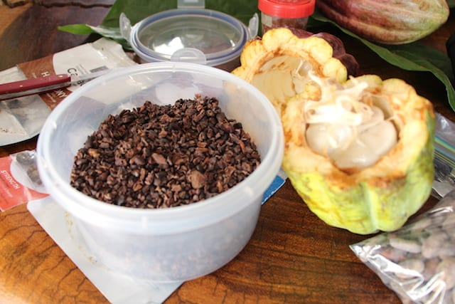Cacao nibs and a split cacao pod.
