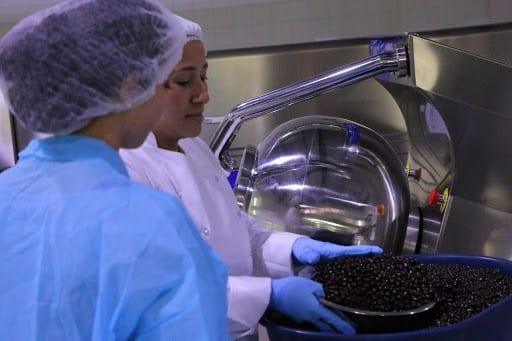 Mujeres en fabrica de chocolate