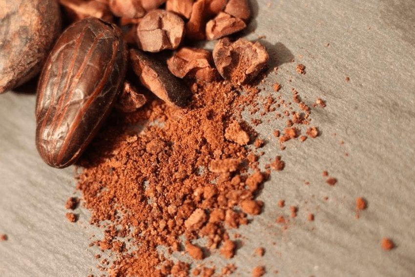 granos de cacao tostado