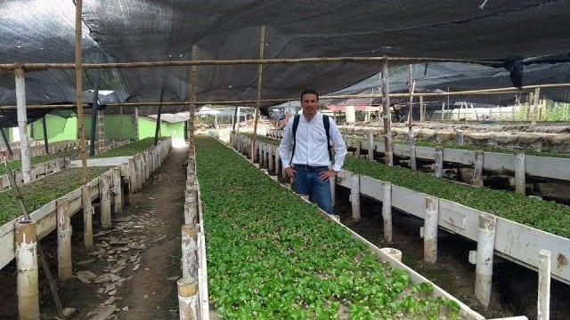 productor en vivero enseñando sus plantas de cafe