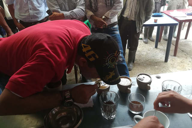 Producer cupping his coffee