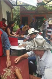 coffee producers learning about defects