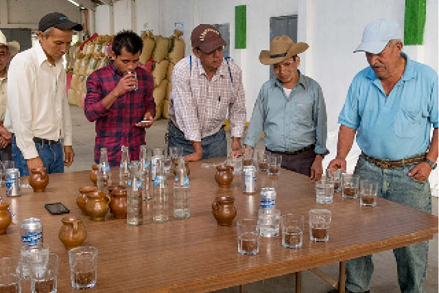 producers cupping coffee