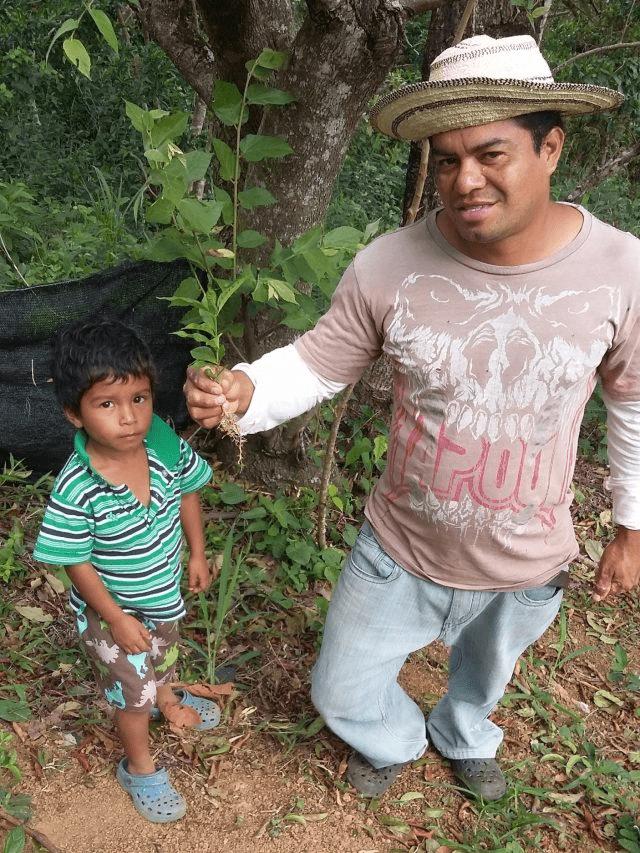 familia de productores sosteniendo una planta de cafe
