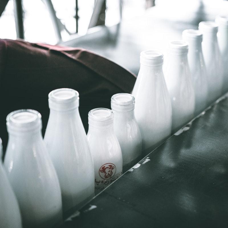varias botellas de leche listas para distribuirse