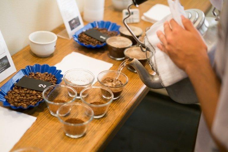 varias tazas con cafe molido para empezar a catar