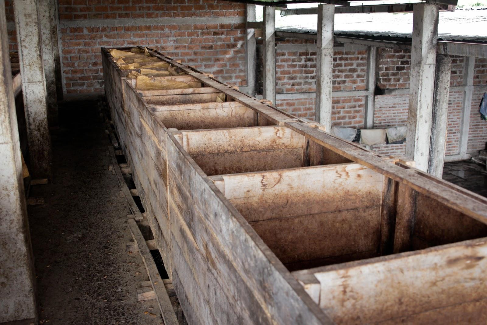 cajas de fermentacion para los granos de cacao