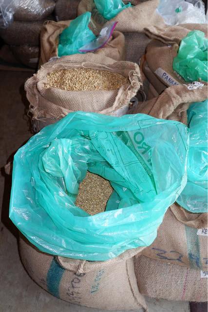 cafe verde en una bolsa grainpro