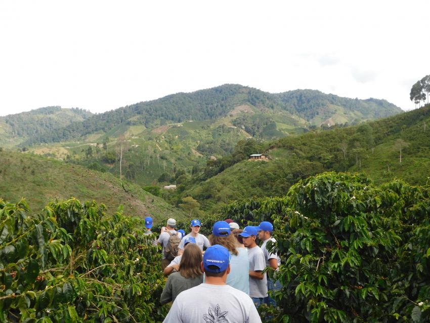 visitando una finca cafetera en colombia