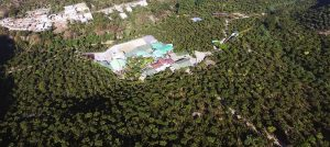 birds-eye view of finca el injerto