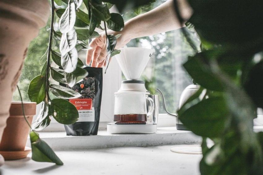 Preparando cafe en un metodo de filtrado