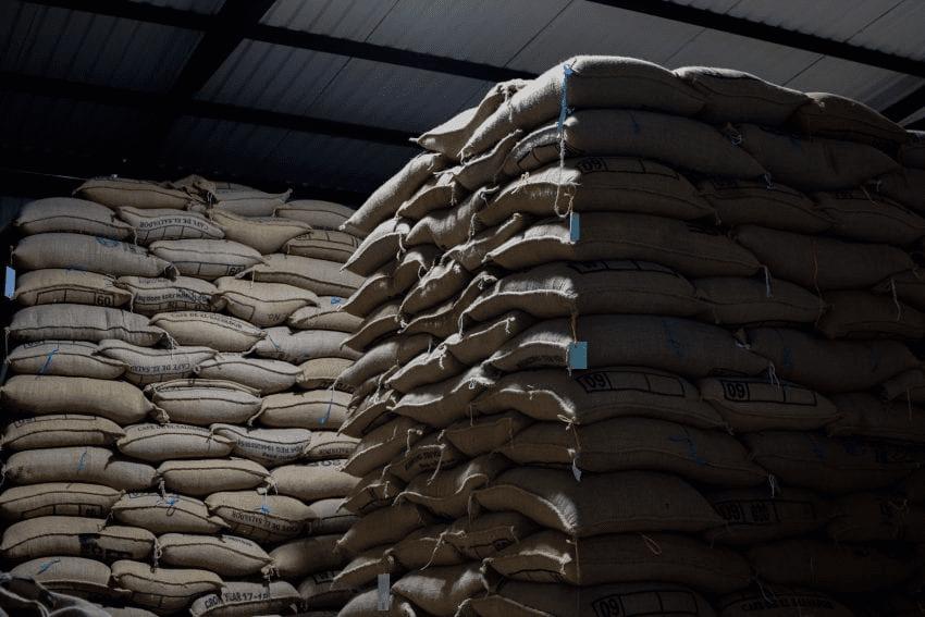sacos de cafe listos para ser exportados