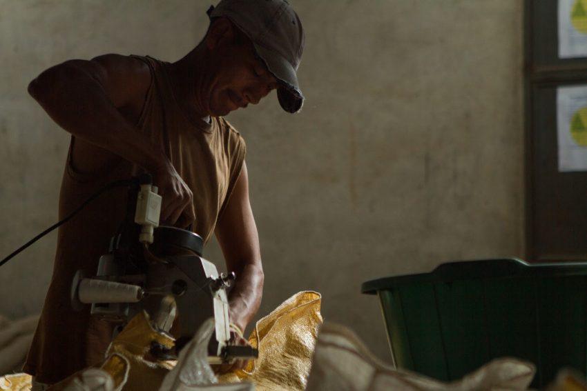 trabajador de finca cafetera