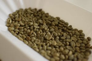 green coffee beans in a tray