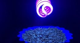 Using UV Light For Quality Control in Coffee Roasting