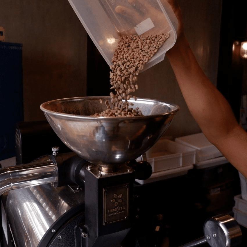 poniendo cafe verde en una tostadora