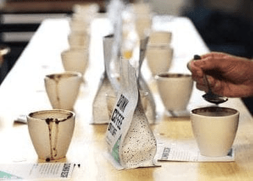 cata de cafe con diferentes perfiles de tueste