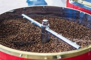 freshly roasted coffee cooling down