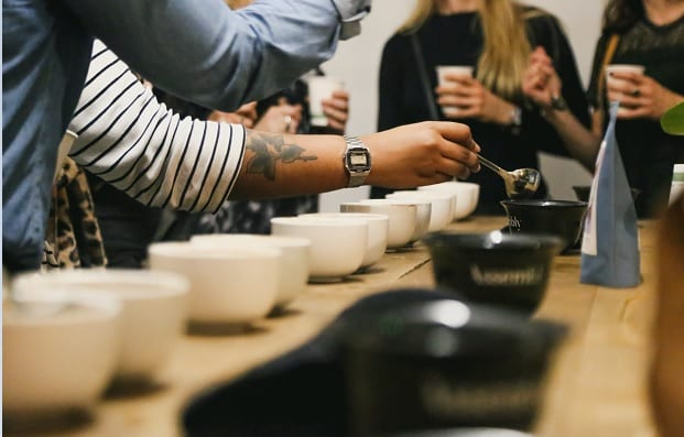 some coffee professionals cupping coffee