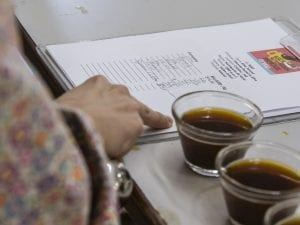bidding for coffees at a coffee auction