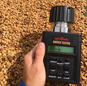 moisture meter used to measure moisture level in cofee