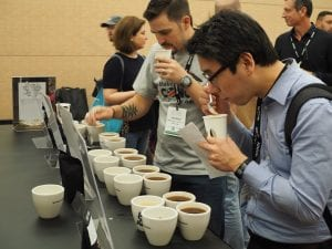 guests cupping coffees at SCA Expo