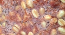 How to Ensure Consistency in Coffee Fermentation & Processing