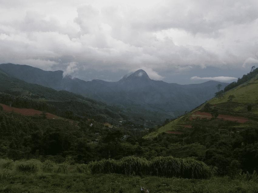 paisaje desde una finca de cafe