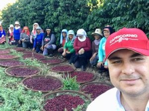 coffee pickers with freshly picked coffee