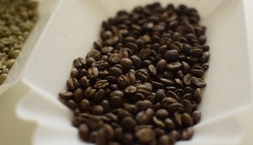 How to Store Roasted Coffee & Prolong Its Freshness