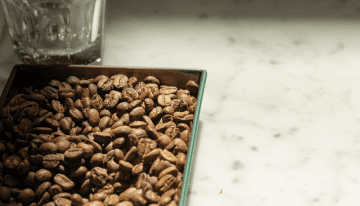 5 Questions Roasters Should Ask Their Green Coffee Importer