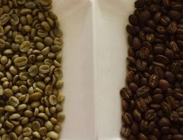 A Roaster's Guide to Green Bean Samples