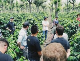How Coffee Roasters Can Use Direct Relationships With Producers