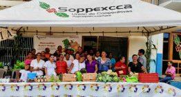 Meses Flacos: ¿Por Qué Los Productores de Café Pasan Hambre?