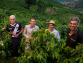 Why Caparaó, Brazil Is Winning Specialty Coffee Awards