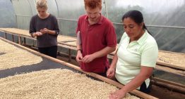 Cómo Una Finca de Café Especial en Ecuador Transformó Una Región