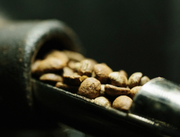 Ethiopian Coffee: A Roaster's Guide