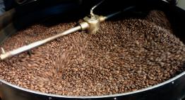 Errores Comunes al Tostar Café y Cómo Evitarlos