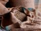 Material Del Empaque: Cómo Afecta al Café Verde Con el Tiempo